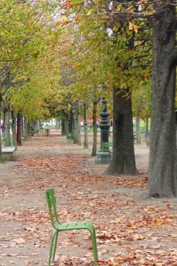 Path with autumn trees and empty green chair