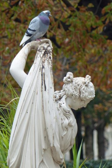 Statue of girl with pigeon on her arm