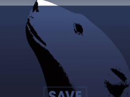 Save the Arctic - Olivier Ploux