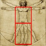 Da Vinci's drawing and body ratios