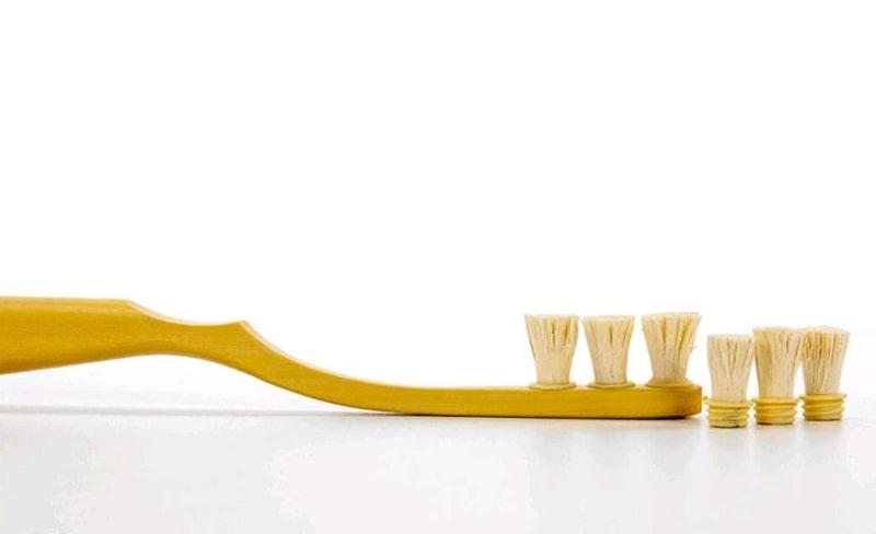 Toothwak Nedir ?