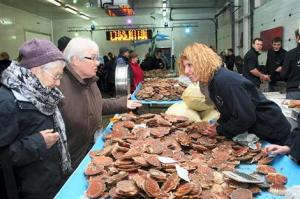 Voulez-vous des poissons? The Criee de Brest is also open to the public