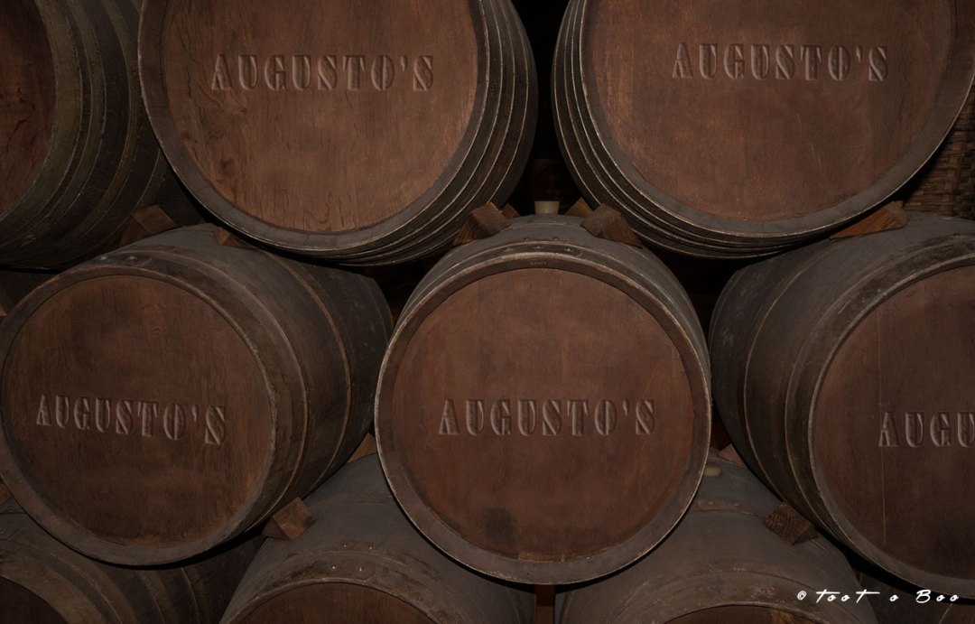 Tonneau-Augusto