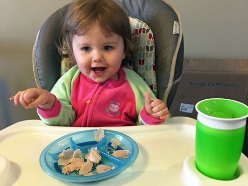 realistic toddler meal ideas deli meat