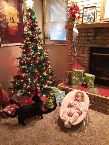 How to Celebrate Baby's First Christmas