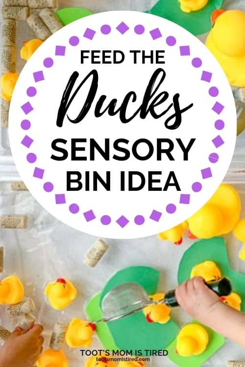 Feed the Ducks Sensory Bin Idea for Toddlers and Preschoolers