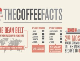 Top 10 Amazing Facts About Coffee