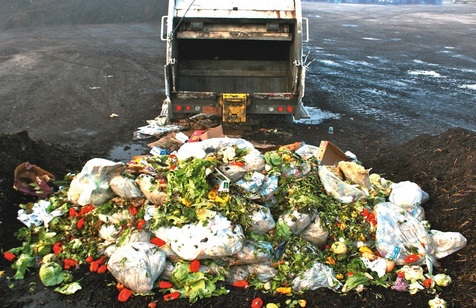 Top 10 Tips to Reduce Food Waste