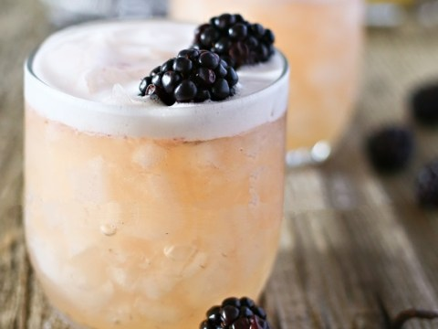 Top 10 Historical Liquor Whisky Sour Recipes