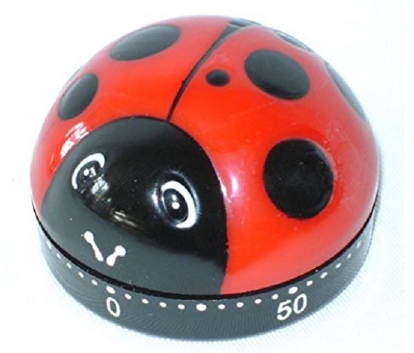 Ladybird Shaped 60 Minute Kitchen Timer