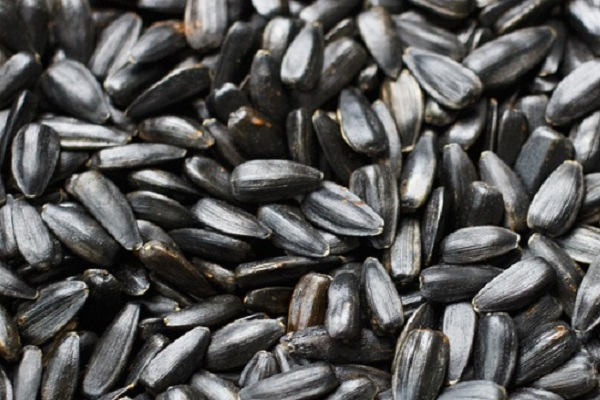 Did You Know Sunflower Seeds Can Stimulate Hair Growth?
