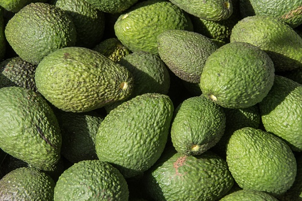 Did You Know Avocados Can Stimulate Hair Growth?