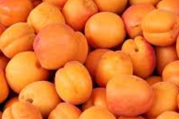 Did you Know Apricots is Good For Your Nails?