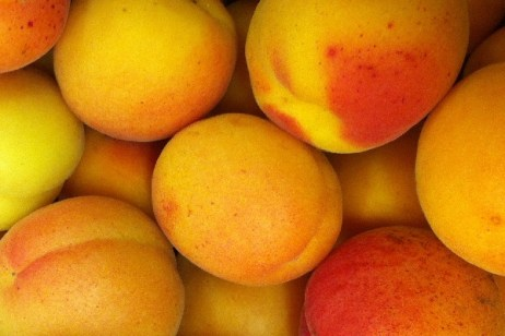 Ten Food and Drinks You Can Make With Apricots