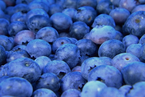 Did You Know Blueberries Can Help Relief Stress?