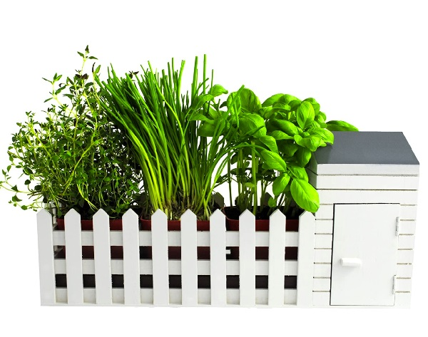 Ten of the Very Best Indoor Herb Gardens Money Can Buy in 2021