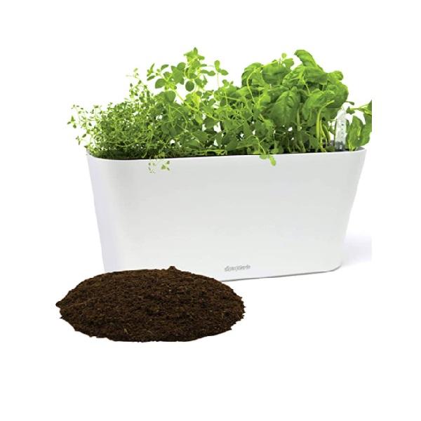 Aquaphoric Indoor Herb Garden Kit