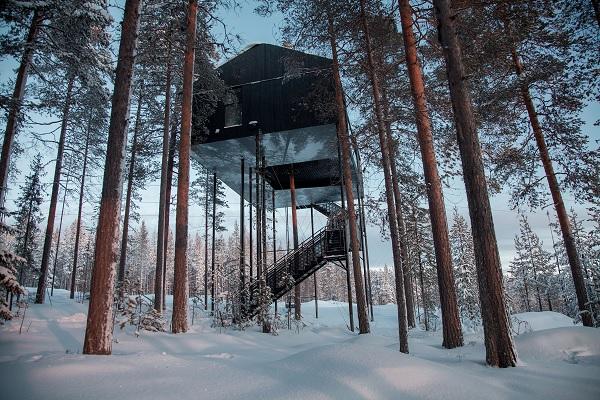 TreeHotel: Harads, Sweden