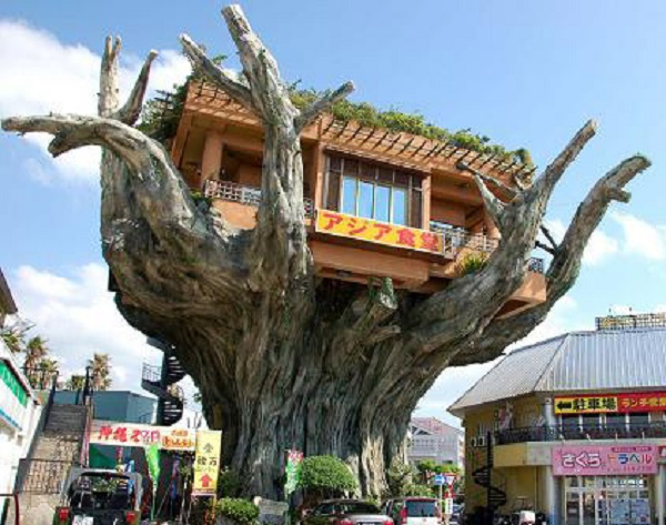 Ten of The Worlds Most Beautiful Tree House Restaurants