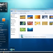 Master the basics of Microsoft Windows 7 and find out what's new in this version of Windows