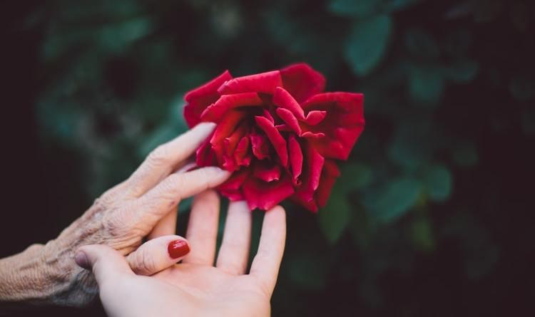 Amelia Kramar: Zauvijek