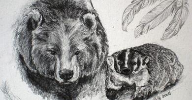 Marko Mišerić: Medvjed i jazavac