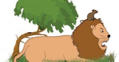 Vedran Mamić: Lav i miš