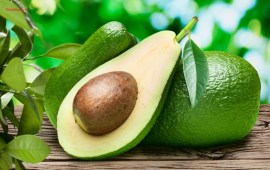 Top 10 Best Healthy Foods for Human Body