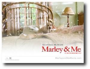 5. Marley & Me
