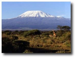 3. Kilimanjaro