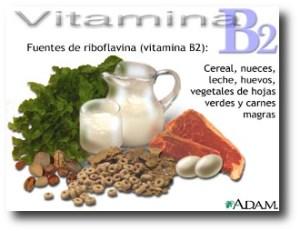10. Vitamina B2