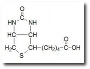 9. Vitamina B7
