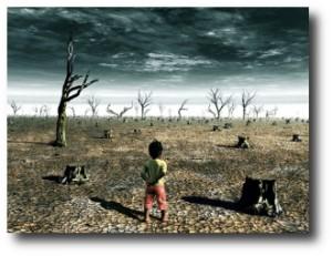 1. La destrucci+¦n de los ecosistemas