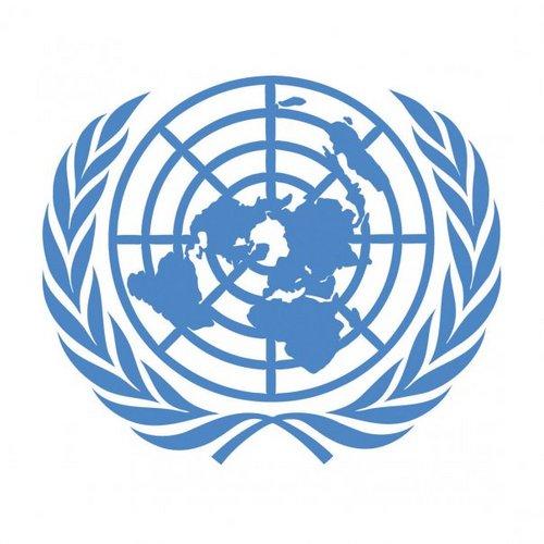 Los 10  principios del Pacto Mundial (Naciones Unidas)