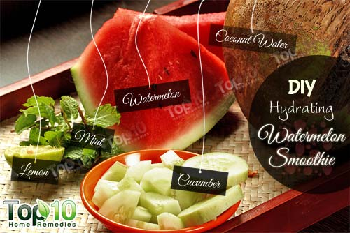 DIY watermelon smoothie ingredients