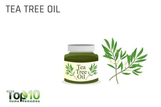 tea tree oil for butt acne