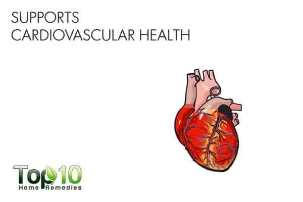 Kiwifruit supports cardiovascular health