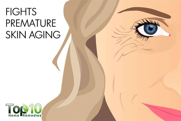 olive oil fights premature skin aging