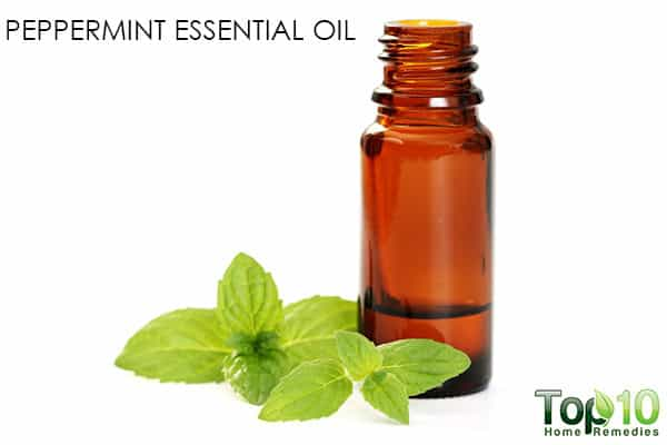 peppermint oil for migraines