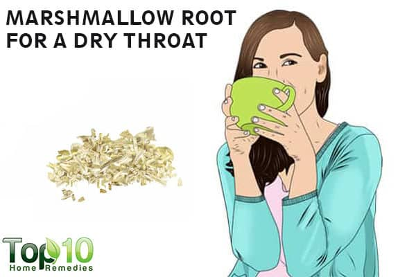 marshmallow root for dry throat