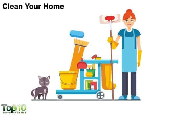 keep your home clean to clear flea infestation