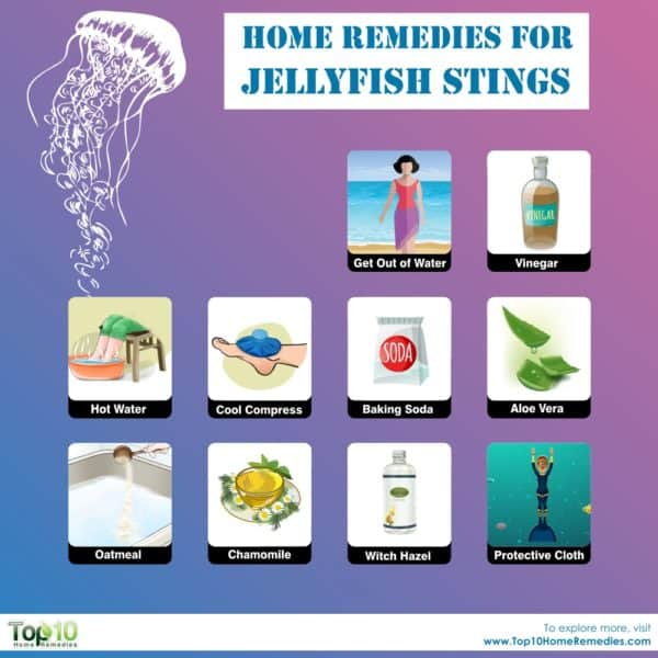 home remedies for jellyfish stings