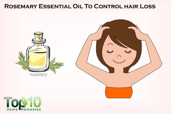 rosemary for hair loss control