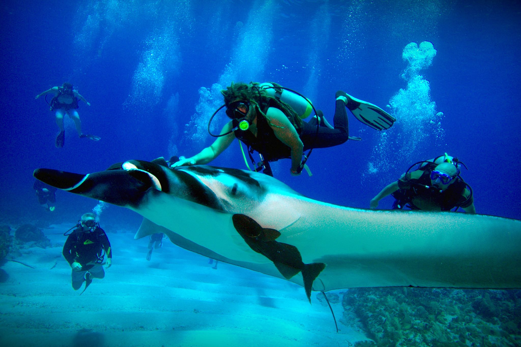 Insurance rates in texas and other states fluctuate, so insuring your boat takes a few, yet simple, steps. Scuba Diving In Crash Boat Guaitiao Eco Tours Top 10 Puerto Rico