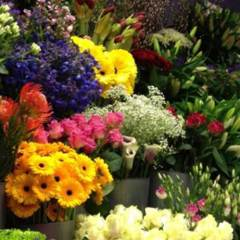 Gold Coast's Top 3 Florists