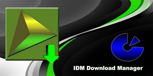 idm pro download