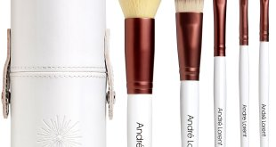 8. Pro Makeup Brush Set