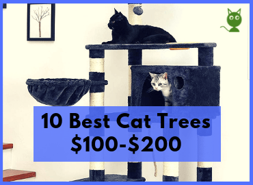 10 Best Cat Trees $100-$200