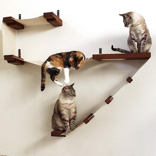 Best Cat Tree $100-$200 - CatastrophiCreations Deluxe Cat Tree Playplace