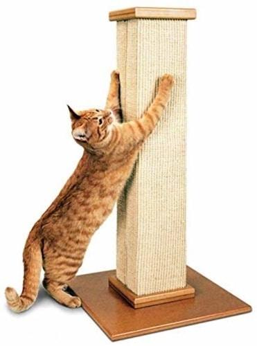 Best Cat Scratching Post - SmartCat Pioneer Pet Ultimate Scratching Post